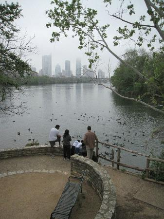 Lady Bird Lake Hike-and-Bike Trail : A view of the lake with downtown Austin in the distance