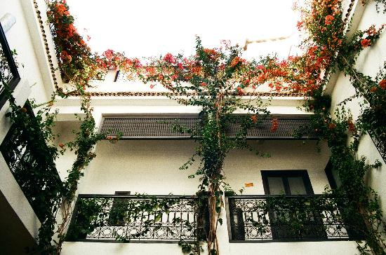 Les Jardins de Riad Laarouss : view from the central courtyard