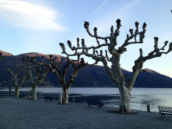 Piazza Ascona Hotel & Restaurants: Ascona lake shore