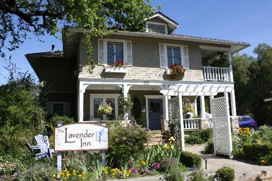 The Lavender Inn: B and B