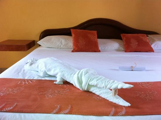 Hotel LunaSol: towel alligator