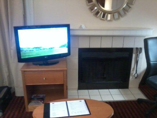 Residence Inn Detroit Troy/Madison Heights: The room actually has a fireplace