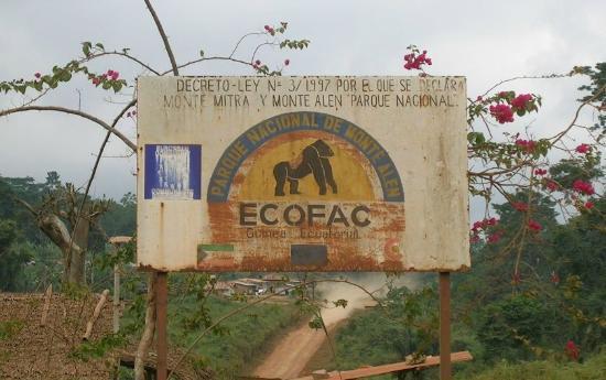 Monte Alen National Park, Ekvatorial-Guinea: Parque Nacional Monte Alen