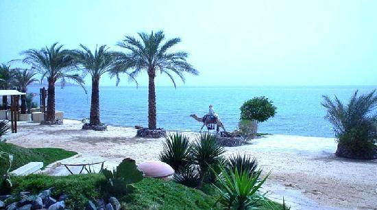 Tobya Boutique Hotel: Beach