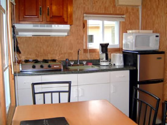 A Better Life Cabins: Cottage #7 Kitchenette