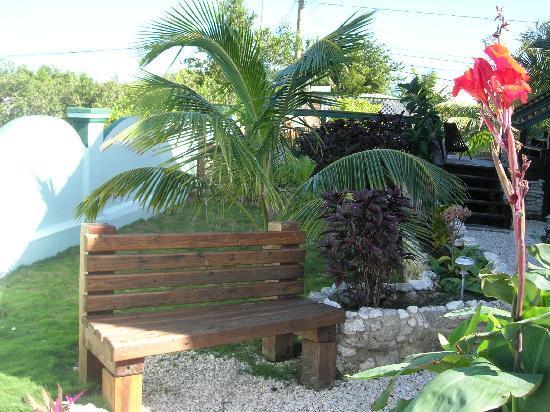 Buena Suerte Bed and Breakfast: Garden bench
