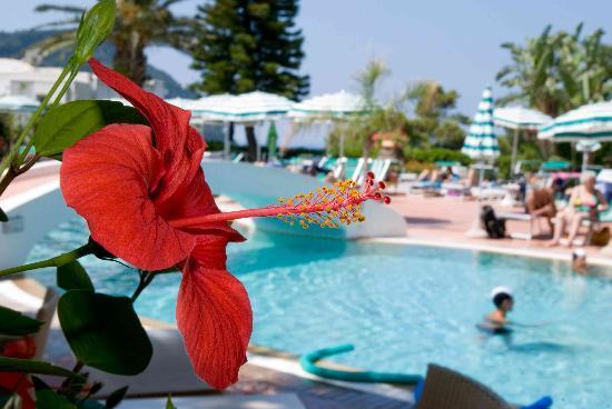 Park Hotel Residence Villa Marinu': centro termale