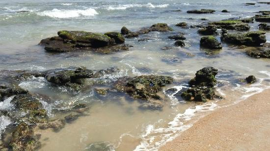 Cinnamon Beach at Ocean Hammock Beach Resort照片