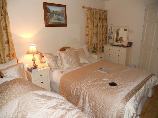 O'Driscoll's Bed & Breakfast: Our lovely room!