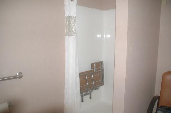 Neptune Park Inn: Shower in accessible room