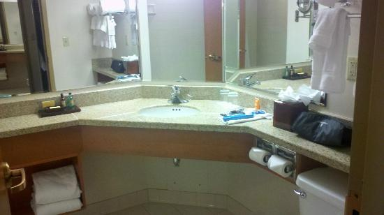 Indianapolis Marriott Downtown: OK bathroom, but not any better than a Fairfield Inn
