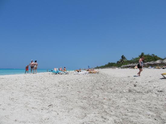 Hotel Roc Arenas Doradas: beach as far as the eye can see