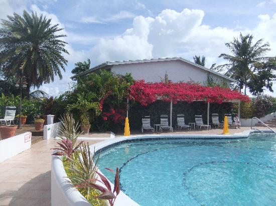 The Bay House Restaurant & Bar : Cleean and fresh