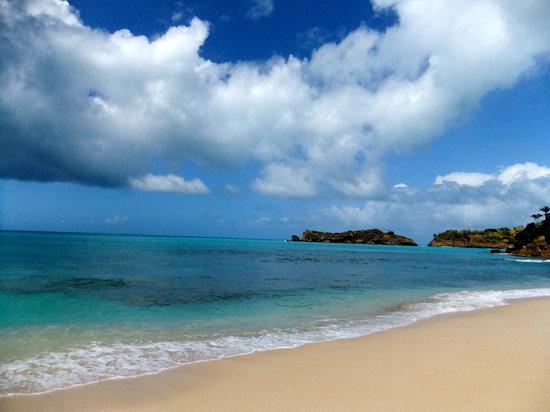 Galley Bay Beach: Blissful