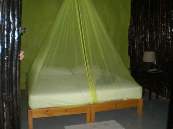 Las Palmas Maya : Our room (the gecko room)