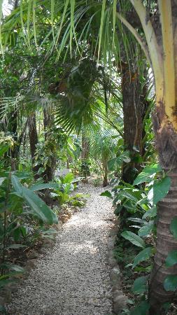 Nosara Paradise Rentals: Property path
