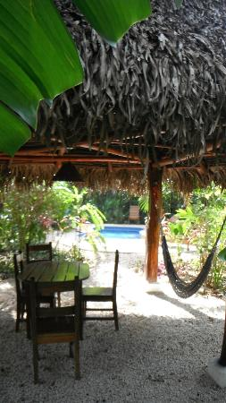 Nosara Paradise Rentals: Pool and cabana
