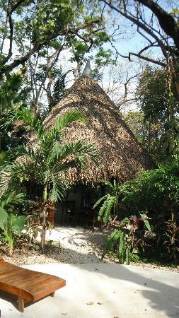 Nosara Paradise Rentals : Cabana