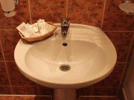Hotel Semashko: Sink