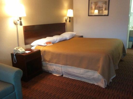Howard Johnson Inn - Albany: bed