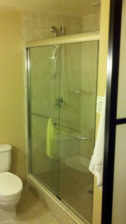 The Pacific Inn: shower doors are clear glass