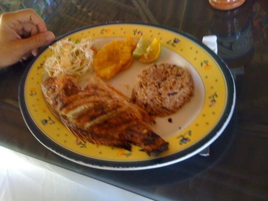 Lili's Cafe: Fish plate