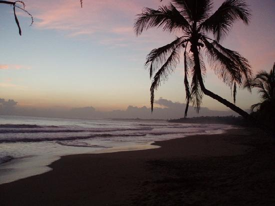 Manu Yoga Village: Cocles beach  (500 mt. from Manu' Yoga)