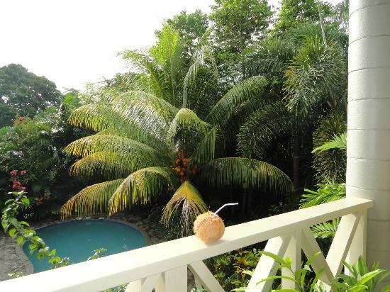 Le Alaimoana Hotel: View from the balcony