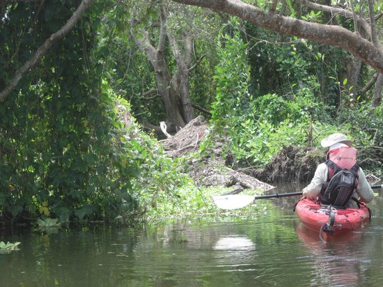 OmetepeHiker Day Tours: Kayak day tour