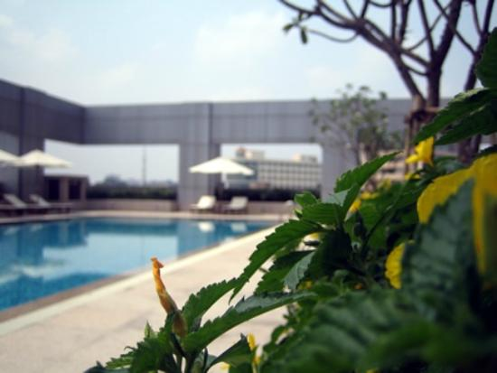 Hotel Nikko Saigon : Swimming Pool