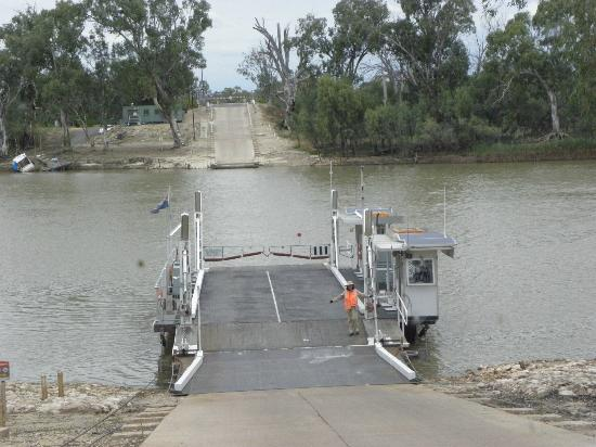 Waikerie Holiday Park: One of the free ferries