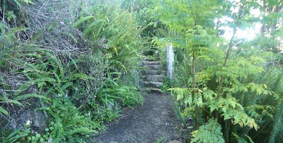 Gaia Retreat & Spa: A secret stairway leading to . . . .