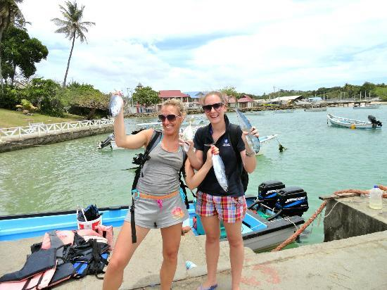 Fish Tobago Tours: Fish!