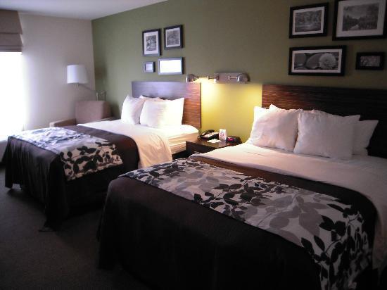 Holiday Inn Express & Suites Rogers: Sleep Inn Hotel, Rogers, MN