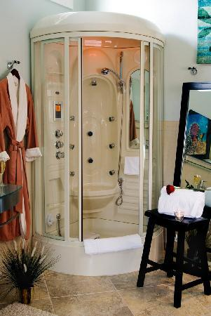 Bronze Antler Bed & Breakfast: Steam Shower in the Mirror Lake Suite