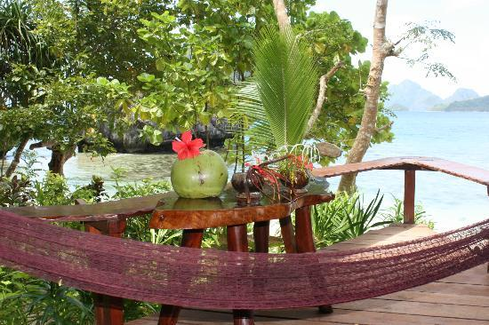Malapacao Private Island: view from the room