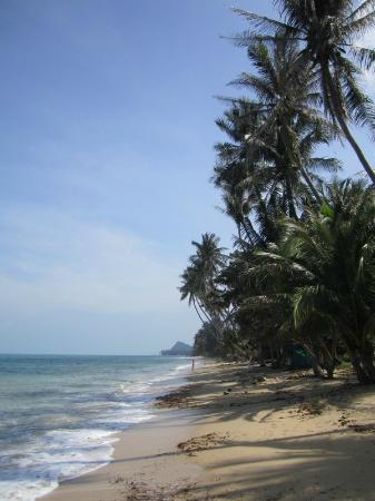 Bang Po Village: Beach on the right