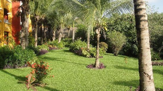 Giardini ben curati del barcelo 39 foto di barcelo maya - Giardini curati ...