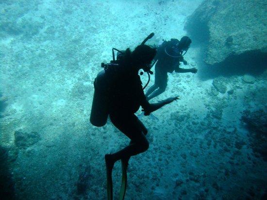 Hidden Depths Diving : Diving