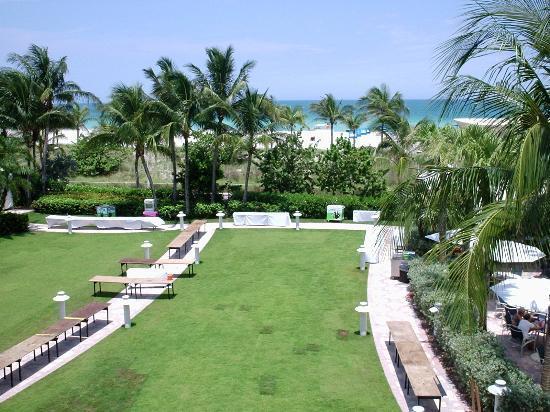 Loews Miami Beach Hotel The Lawn