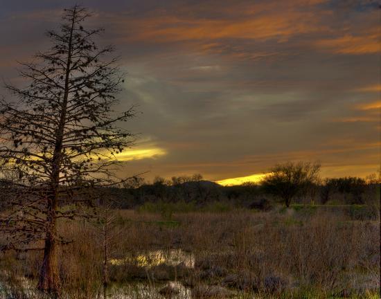 Cibolo Nature Center: CNC, sunset at the marsh