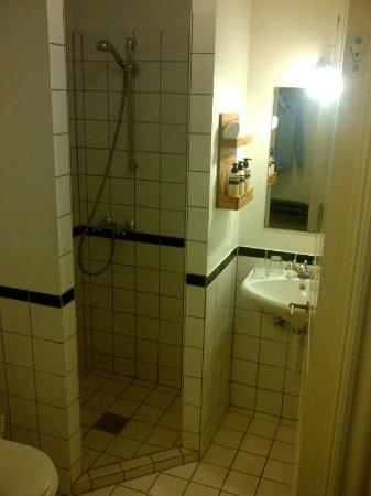 Carlton Guldsmeden - Guldsmeden Hotels : shower/wc is too small