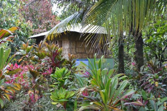 Zen Gardens: au milieu du jardin