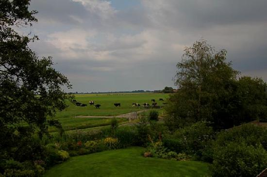 Overleekerhoeve: Everything here is fresh, green and Beautiful in June.