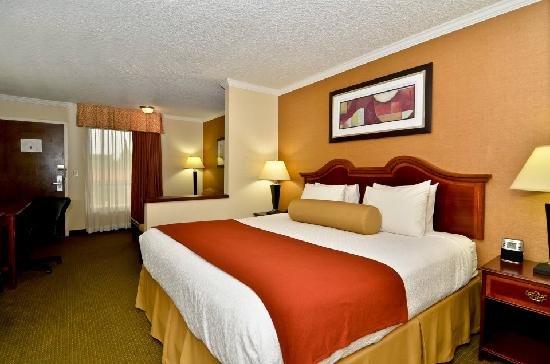 Best Western Plus Galleria Inn & Suites: Spacious king bedroom