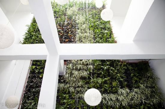 Tantalo Hotel / Kitchen / Roofbar: Interior Green Wall