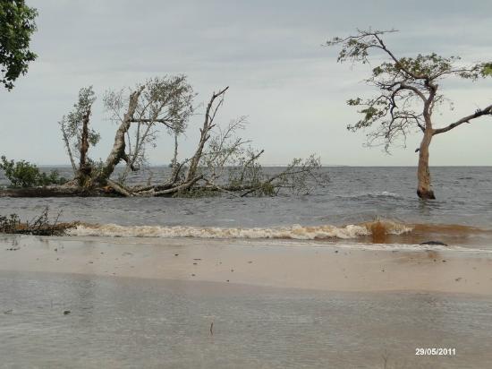 Praia do Tupé : Praia