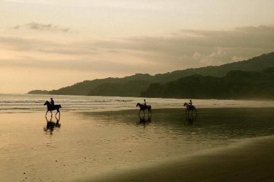 Rio Tico Safari Lodge: Paardrijden Playa Hermosa