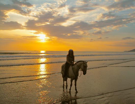 Rio Tico Safari Lodge : Paardrijden Playa Hermosa
