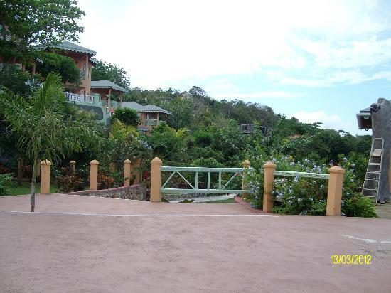 Pimento Lodge Resort: grounds